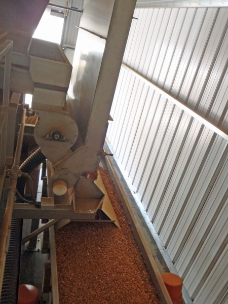 VWM SuperVac Airleg feeding transfer Vi-Pro Vibratory Conveyor with Accepted Product