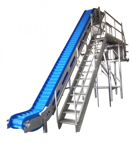 VWM Z-Style Elevating Conveyor with Catwalk