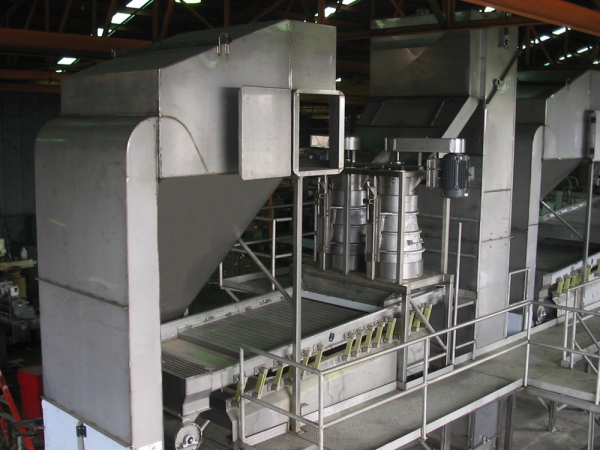 VWM High Speed Raisin Processing